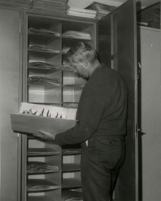 Dr. William Hess reviewing specimens in Herbarium