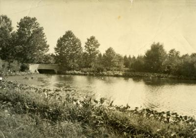 View of Lake Marmo including old concrete bridge