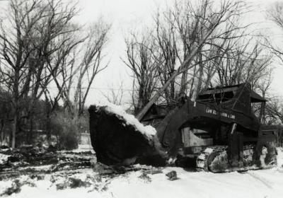 Moving large root balled tree in winter when Route 53 was widened, using Kluckhohn tree moving outfit from Naperville