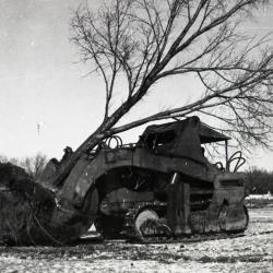Moving large tree with Kluckhohn tree mover, when Route 53 was widened to four lanes
