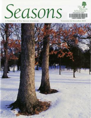 Seasons: November/December 2004
