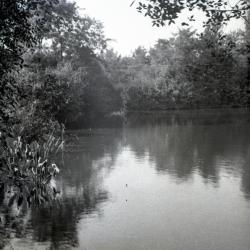 Lake Jopamaca looking north