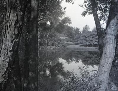 Looking east over lower residence pond