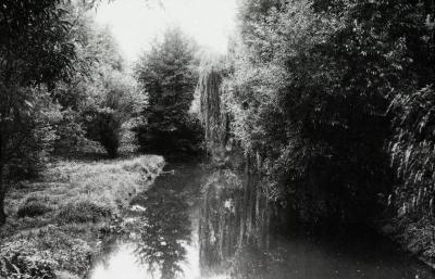 DuPage River, looking south from bridge