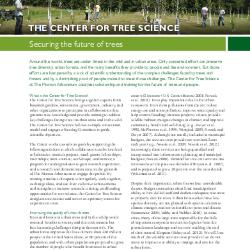 Center for Tree Science Strategy