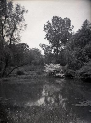 Residence pond