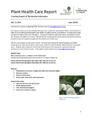 Plant Health Care Report: Issue 2019.8