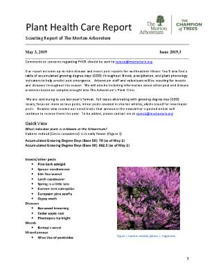 Plant Health Care Report: Issue 2019.3