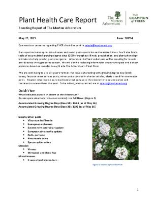 Plant Health Care Report: Issue 2019.4