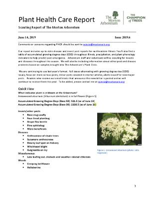 Plant Health Care Report: Issue 2019.6