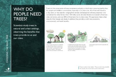 Gateway to Tree Science Interpretation Panels, Choosing the Right Tree