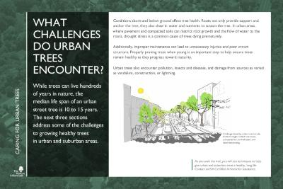 Gateway to Tree Science Interpretation Panels, Caring for Urban Trees