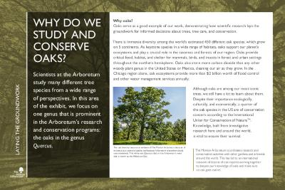 Gateway to Tree Science Interpretation Panel, Laying the Groundwork