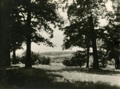 View from big oak area east of Lakeview Drive looking over Lake Marmo & Spruce Hill to Tate Woods in distance