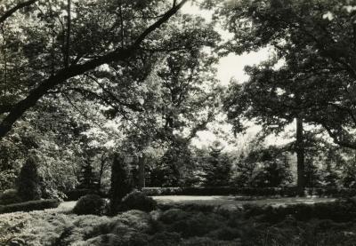 Joy Morton burial plot after burial