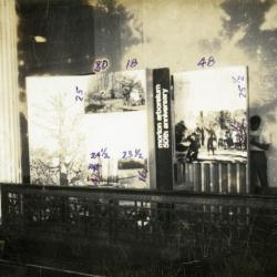 The Morton Arboretum 50th anniversary standalone or traveling exhibit, facing photograph panel
