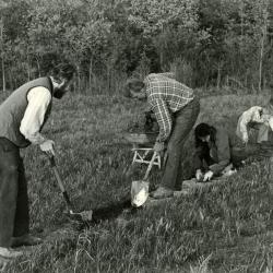 Volunteers at work in the prairie, laying stones for path