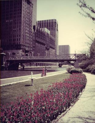 Chicago River Garden, between Randolph and Washington St., view from walkway to river