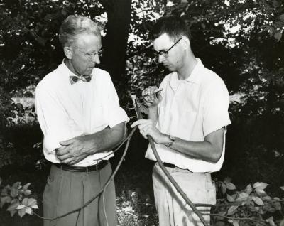 Clarence Godshalk with Webster Crowley studying Dutch Elm Disease