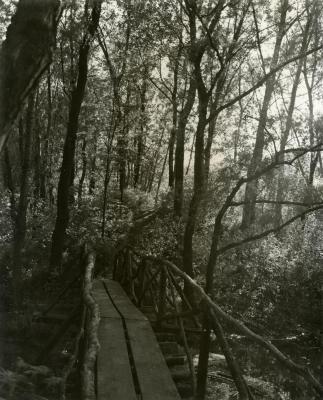 Footbridge over Lake Jopamaca leading into Ozarks Collection