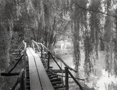 Lake Jopamaca footbridge, looking south