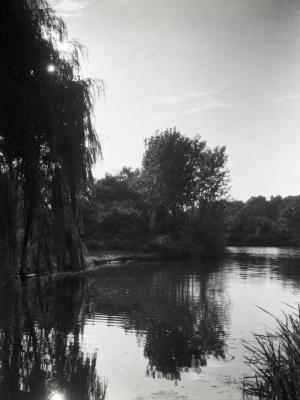 Lake Jopamaca in summer looking west