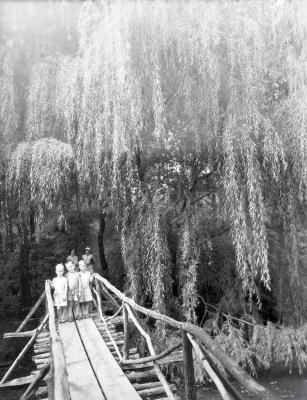 Three boys on Lake Jopamaca Footbridge