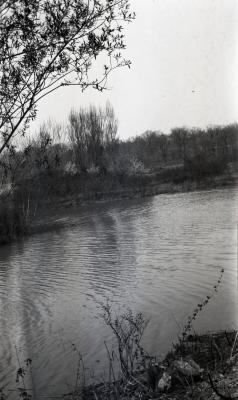 DuPage River looking west at Ozark Collection