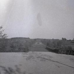 Hedge Garden, early view