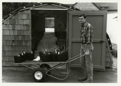 Peter Linsner moving plants with wheelbarrow