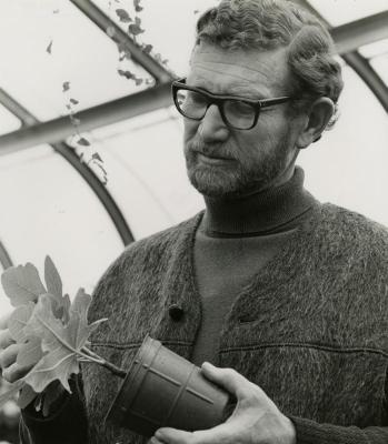 Charles Lewis in greenhouse