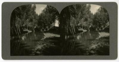 DuPage River looking north, stereograph