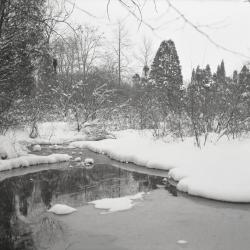 Lake Marmo stream overflow in winter