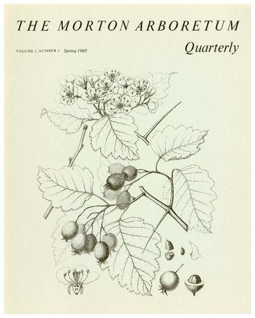 The Morton Arboretum Quarterly V. 01 No. 01