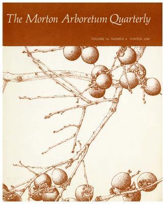 The Morton Arboretum Quarterly V. 16 No. 04