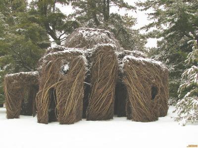 "Patrick Dougherty Sculpture ""Xanadu,"" winter"