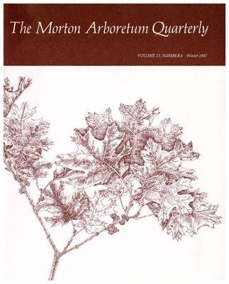 The Morton Arboretum Quarterly V. 23 No. 04