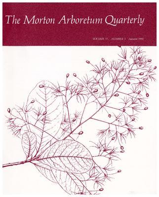 The Morton Arboretum Quarterly V. 27 No. 03