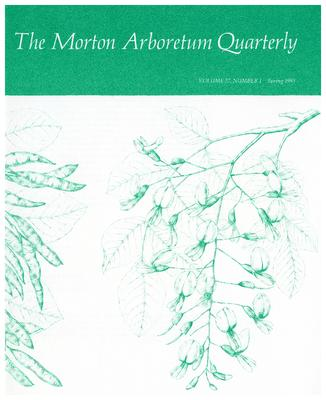 The Morton Arboretum Quarterly V. 27 No. 01