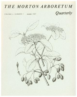 The Morton Arboretum Quarterly V. 03 No. 03