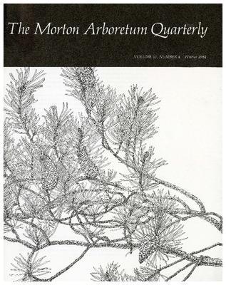 The Morton Arboretum Quarterly V. 17 No. 04