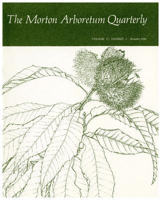 The Morton Arboretum Quarterly V. 17 No. 03