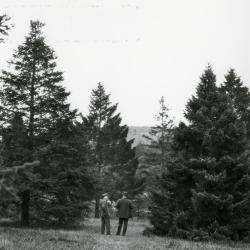 O.C. Simonds & Joy Morton at Arnold Arboretum