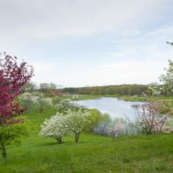 View from berm overlooking Crabapple Lake in Spring