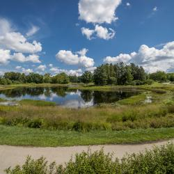 Bright blue sky reflects on Meadow Lake