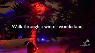 Illumination at The Morton Arboretum, Promotional Video