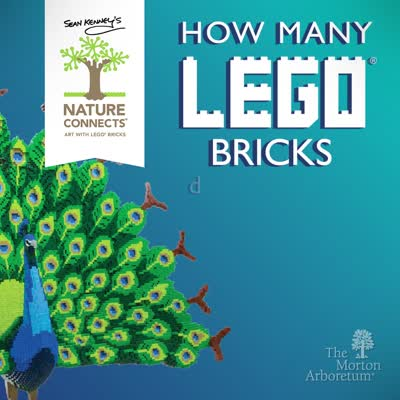 Nature Connects, How Many Lego Bricks, square