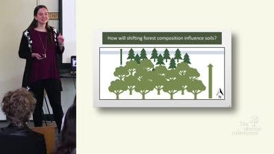 2019 Undergraduate Research Symposium: Rachel Sims