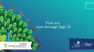 Nature Connects, CTA Digital Platform Ad