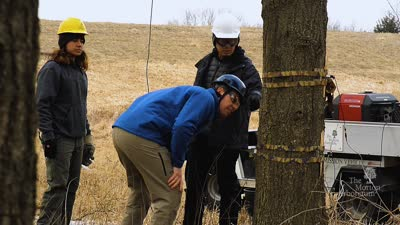 Planted Episode 3: Versatility, with guest Marvin Lo, Research Assistant at The Morton Arboretum, promo video